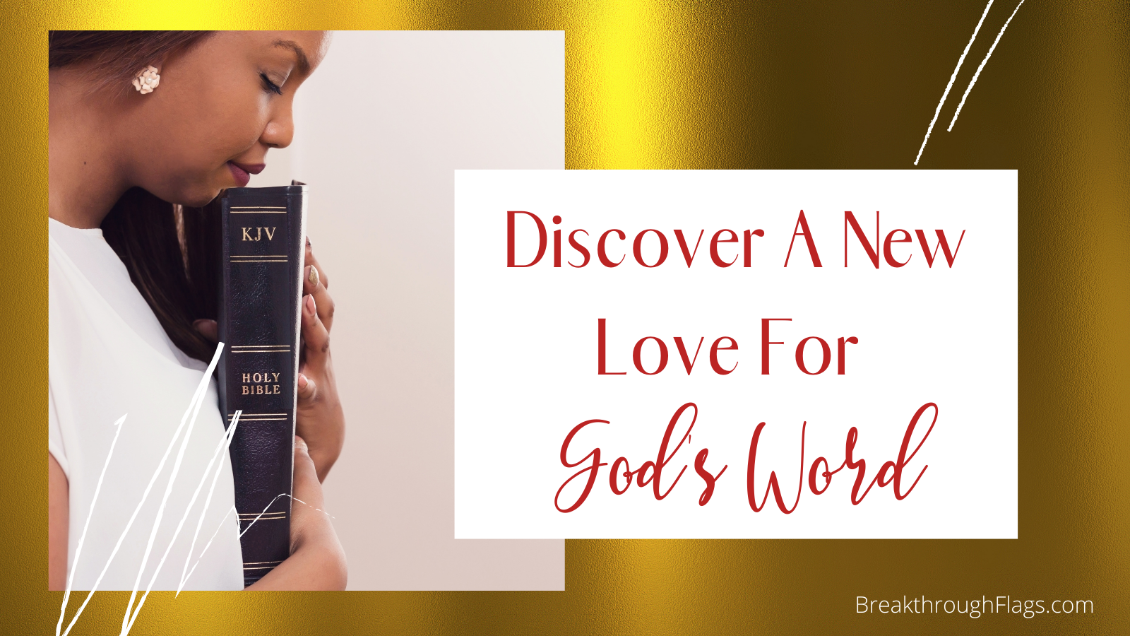 Discover a New Love for God's Word