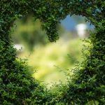 heart in bushes